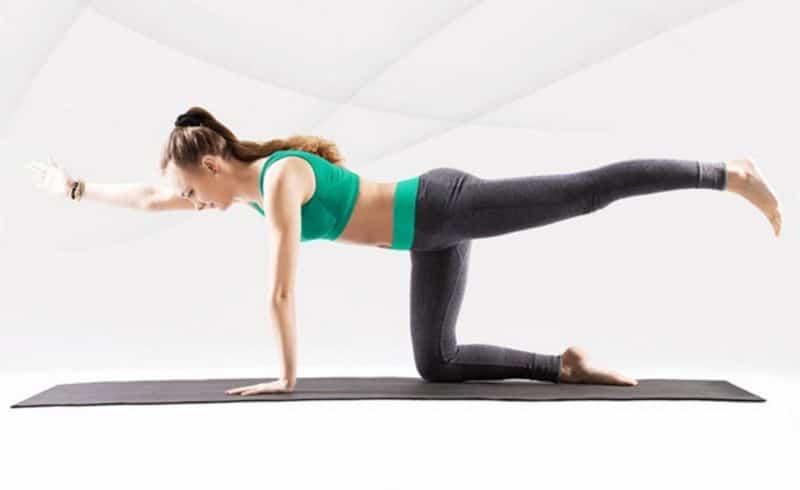 Bài tập thể dục giảm mỡ toàn thân cho nữ (Bài tập Bird – Dog)
