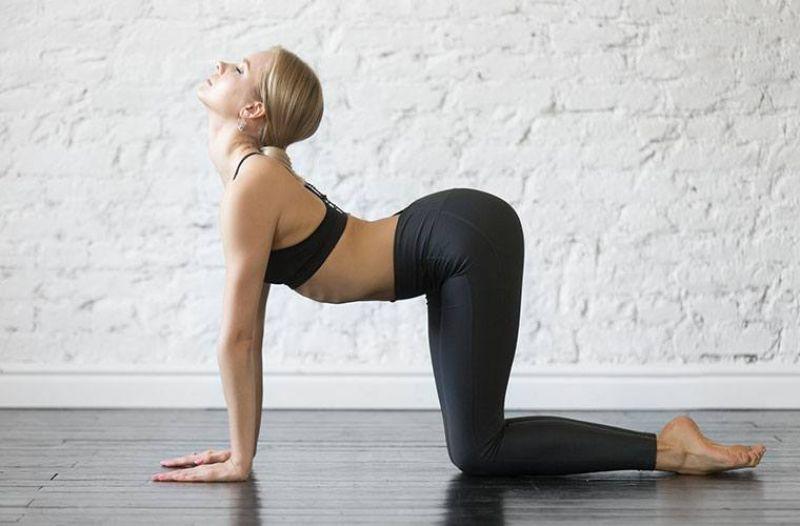 Bài tập con bò có khả làm cột sống cổ trở nên khỏe mạnh và linh hoạt hơn