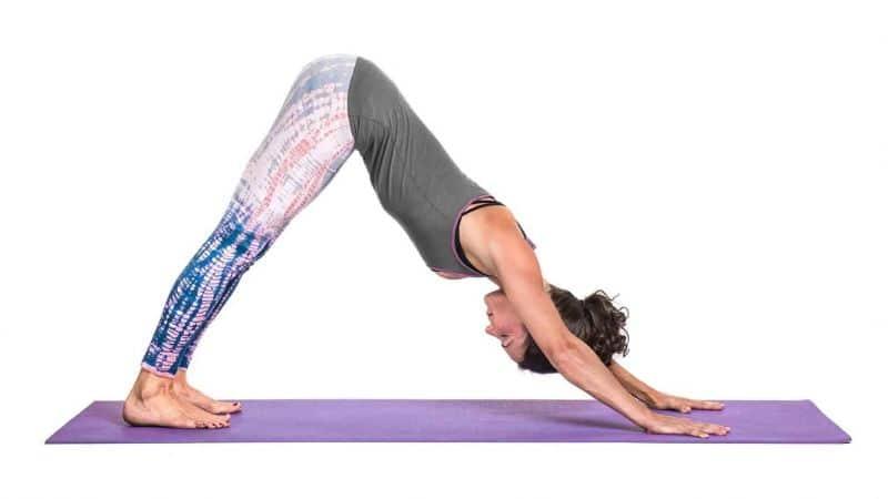 Bài tập yoga chó úp mặt thường dành cho nữ giới tập luyện tại nhà
