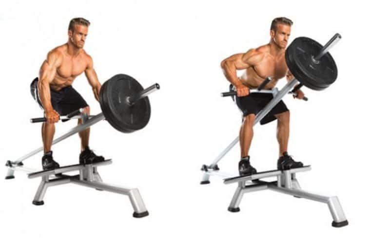 Standing T-Bar Row cũng là sự lựa chọn tối ưu cho những người muốn sở hữu bộ ngực, lưng đẹp