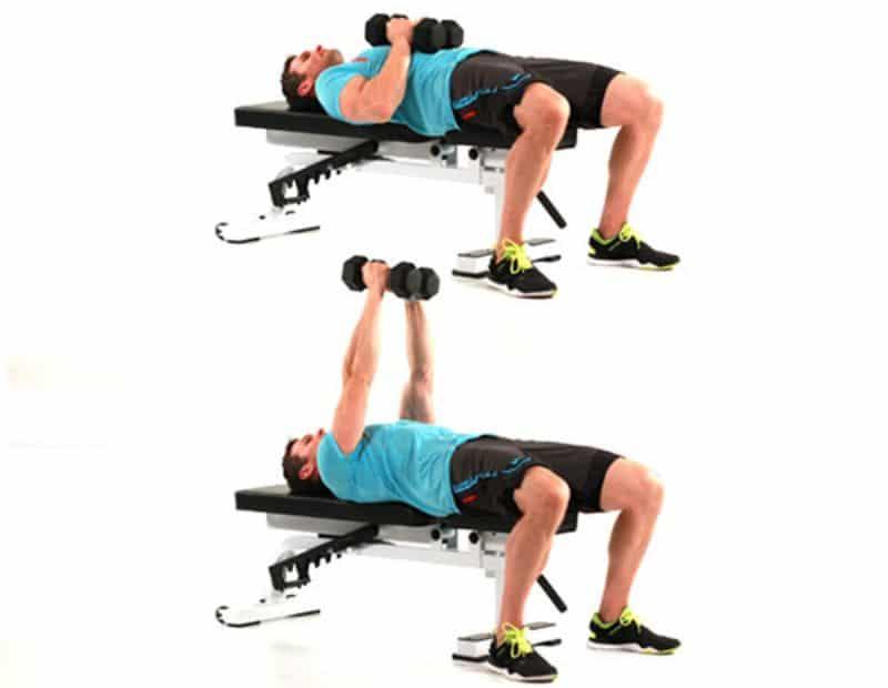 Bài tập đẩy tạ tay có khả năng kích thích cơ ngực xuyên suốt mọi động tác