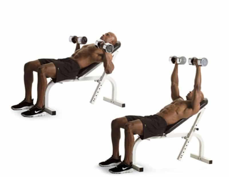 Đẩy tạ trên ghế nghiêng là một trong các bài tập ngực được nam giới yêu thích