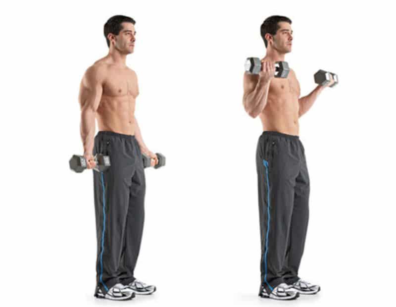 Bài tập đứng gập tạ tay chính là sự lựa chọn tối ưu nhất với người muốn tăng cường cơ bắp