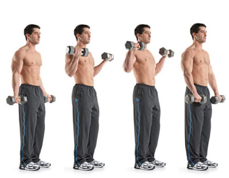 Zottman là bài gập tạ tác động mạnh mẽ đến các cơ bắp tay